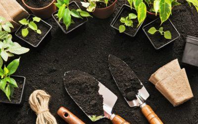 The Gardener's To-Do List for Spring