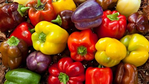 Tips For Growing The Best Bell Peppers In Your Garden