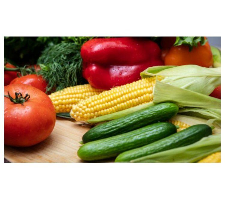 Ready Nutrition Summer Seed Variety Kit – 14 Summer Favorites