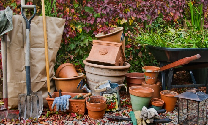 Now is the time to get your Fall garden chores accomplished so that in the Spring your garden is ready to go!
