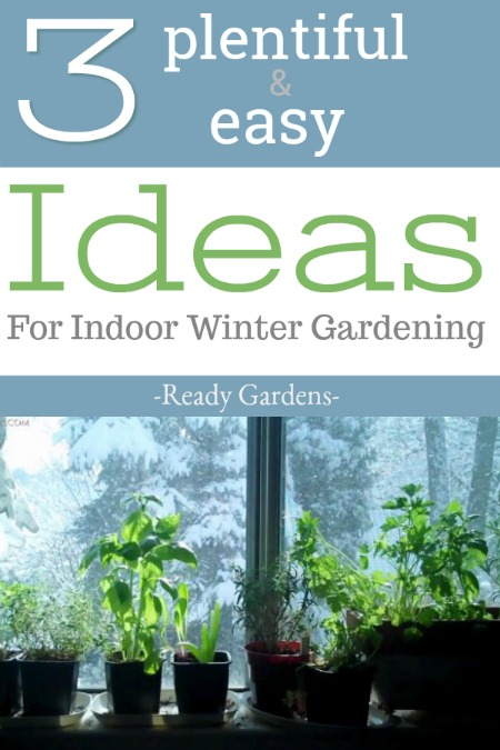 Even though it's not officially gardening season, you can still grow a winter garden indoors. Here are 3 easy ideas!