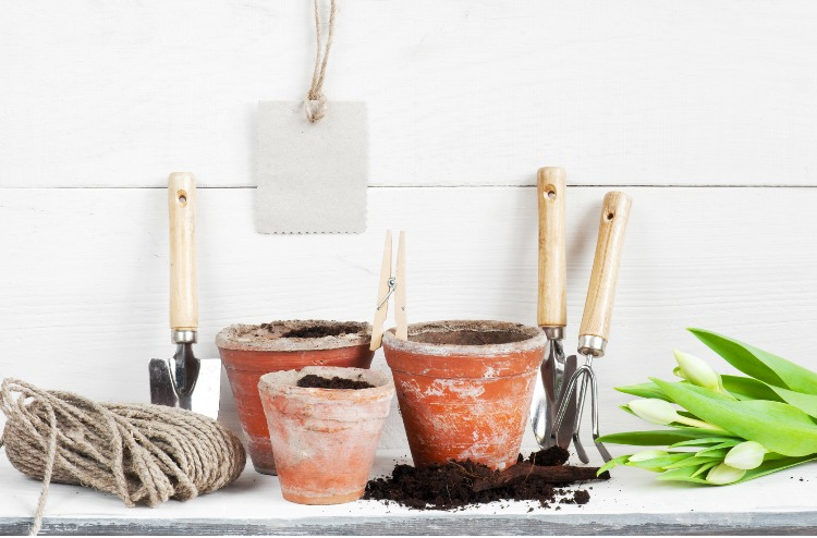 A Holiday Gift Guide For That Special Gardener