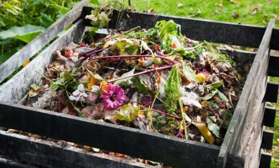 Your garden will produce healthier vegetables and more beautiful flowers with just the addition of a compost pile. Composting doesn't have to be difficult and although it may seem like a daunting task to get started, this helpful guide should help walk you through any rough patches.