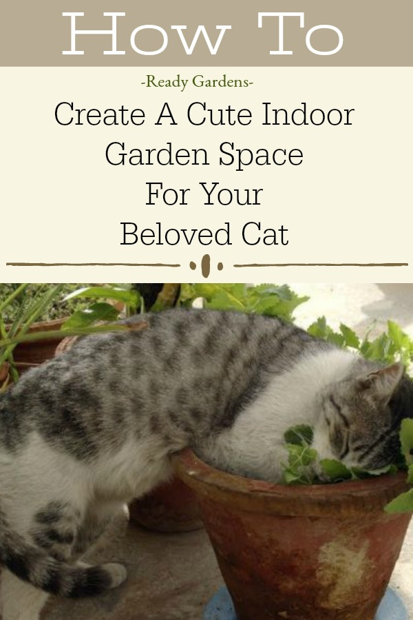 Anyone who has a furry friend they love understands how much companionship a cat can provide.  So why not consider making an indoor garden for your friend to enjoy while boosting your gardening skills at the same time?  #ReadyGardens