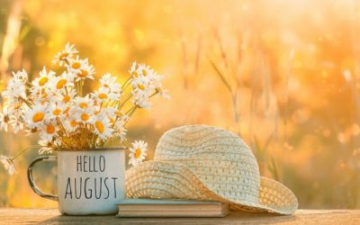 10 Things To Do In Your Garden in August